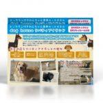 犬専用ペットホテルのサービスとメリットを紹介するチラシデザインを制作しました。