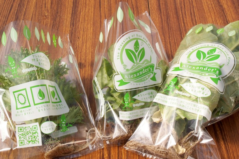 野菜の包装フィルムデザイン2