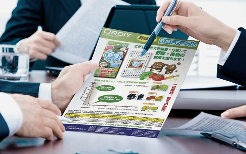 各種ビジネス・販促関連のチラシ実積を見る (Click!)