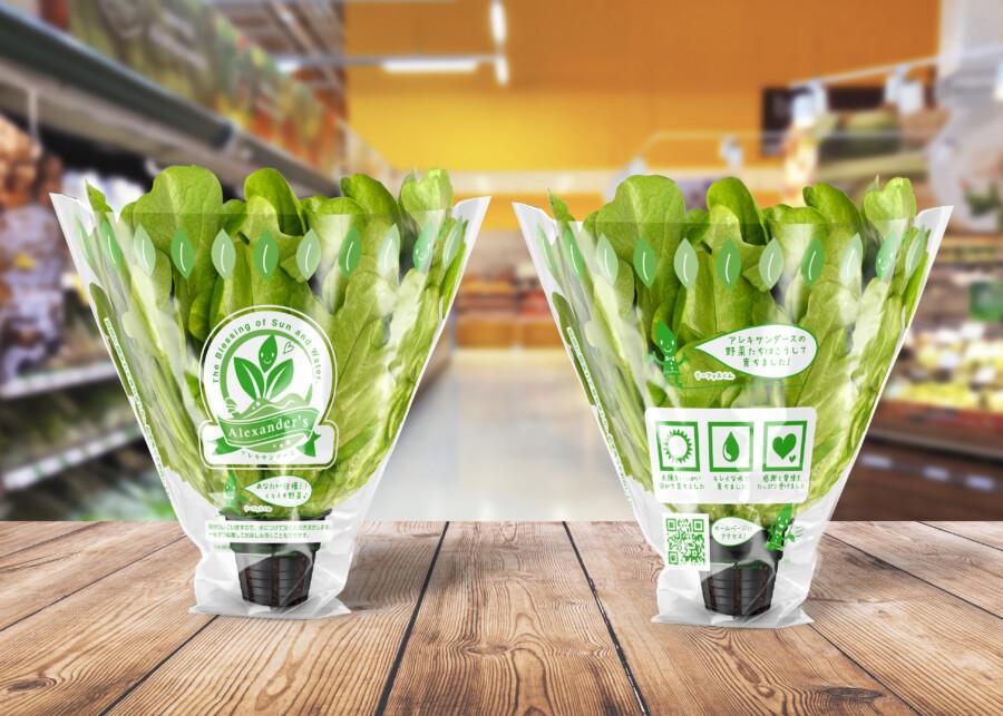 野菜ブランドのフィルムパッケージデザイン作成例3