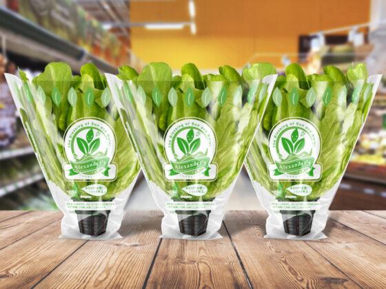 野菜ブランドのフィルムパッケージデザイン作成例1