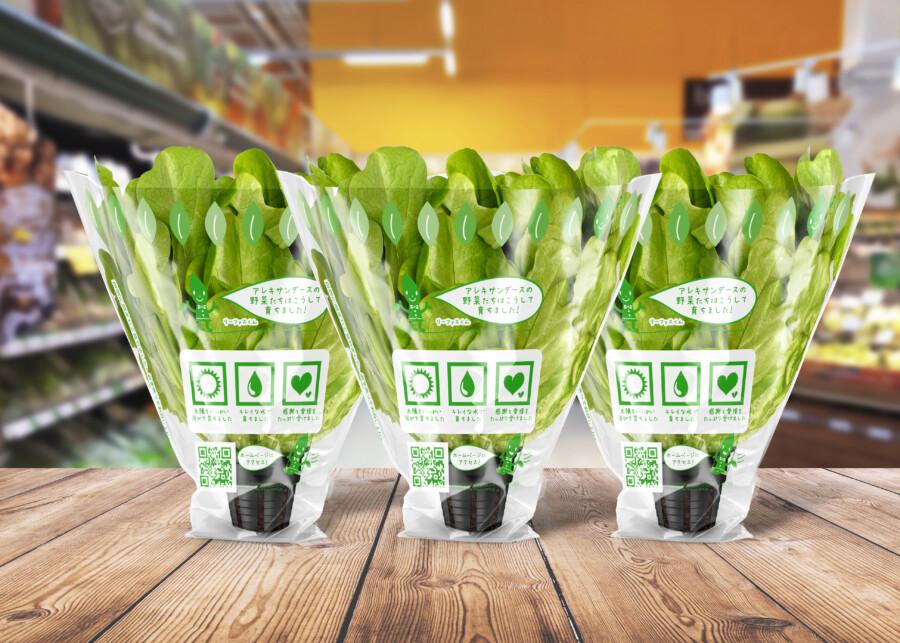 野菜ブランドのフィルムパッケージデザイン作成例2