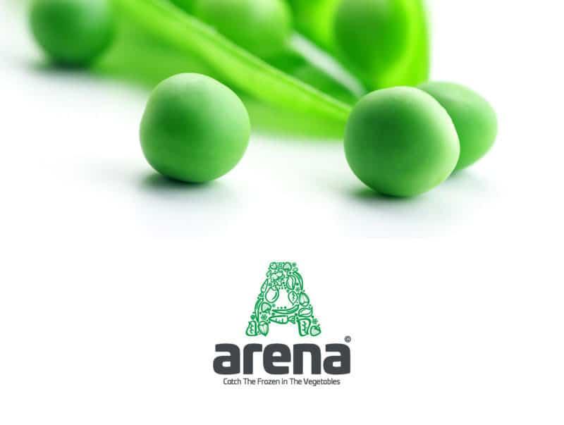 冷凍野菜ブランドのロゴデザイン作成例