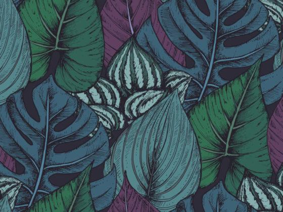 植物文様が織りなす整然とした美しさが際立つパッケージデザインについて