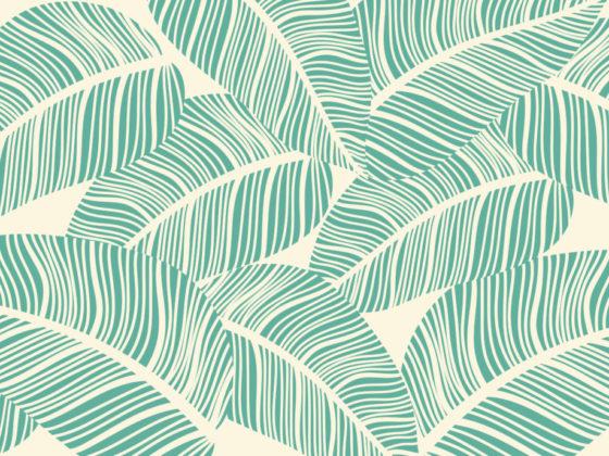 植物イラストが美しいパッケージデザイン