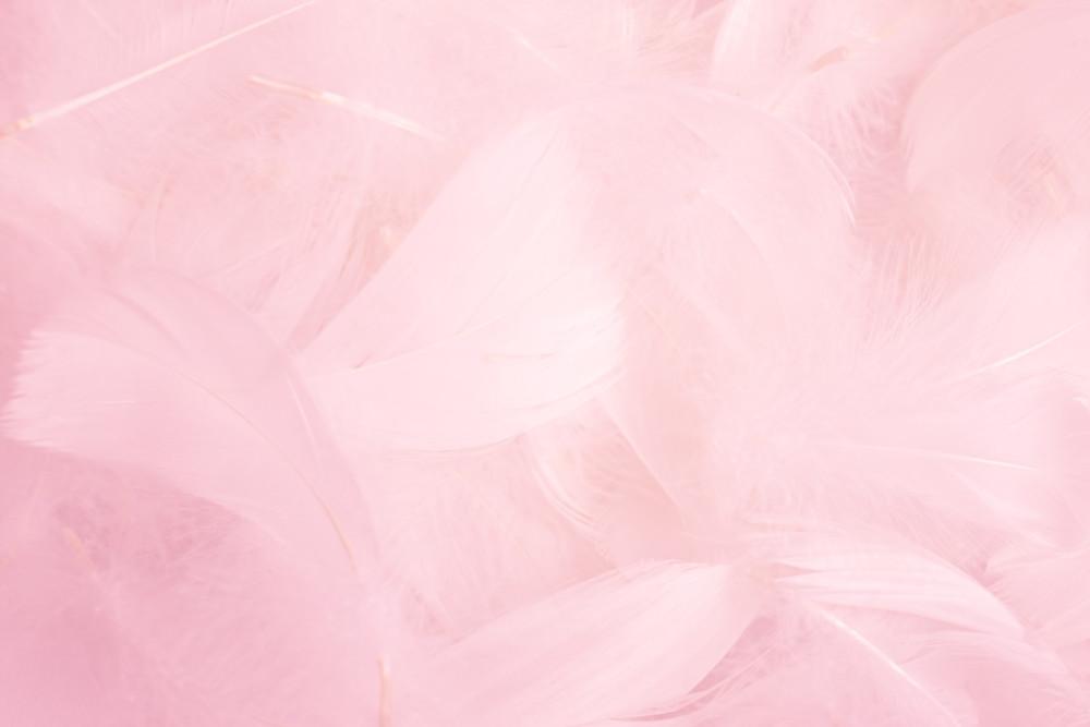 ピンクを基調とした名刺デザイン作成例について
