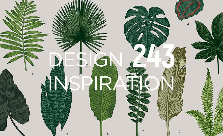 植物のイラストが美しいボタニカルなデザイン