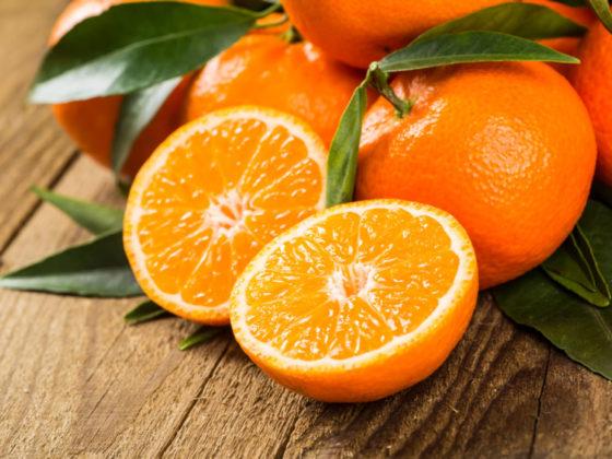 「オレンジ」をキーカラーにしたロゴデザイン戦略