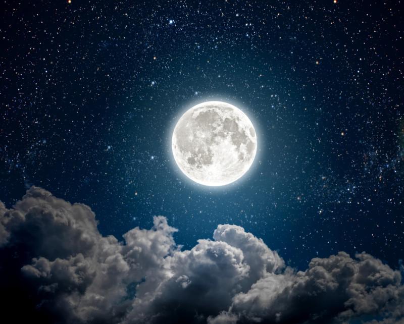 月のロゴデザイン