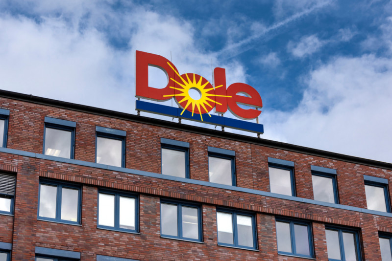 Doleの企業ロゴデザイン
