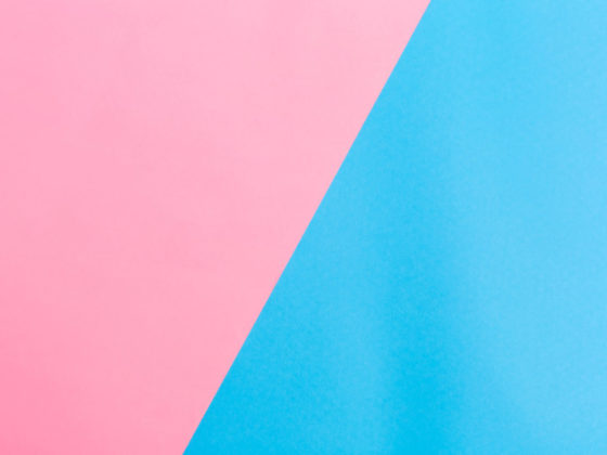2色印刷のパンフレットデザイン