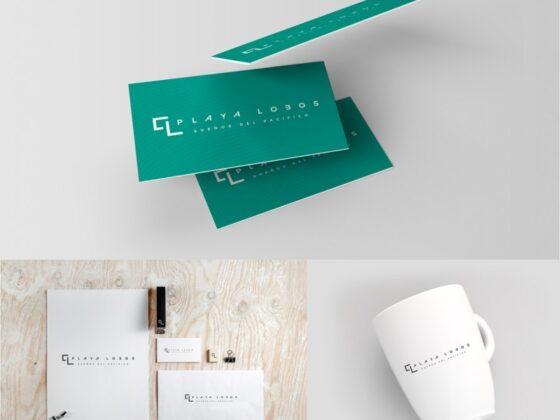 チリのデザイナーによる作成例