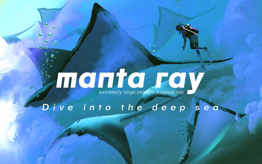 フリーフォント「MANTA RAY」