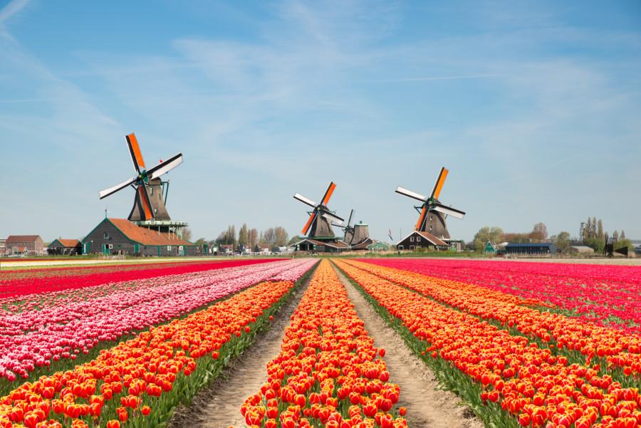 オランダ王国のイメージ