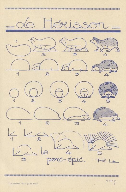 ハリネズミの描き方