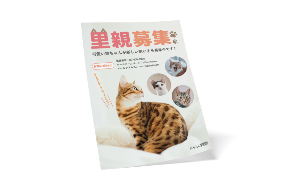ペットの里親募集の無料チラシテンプレート(猫)_A4