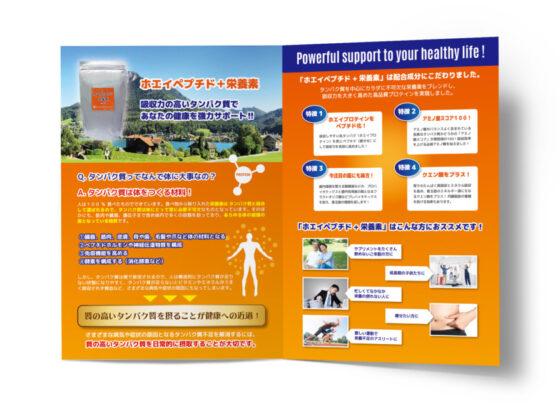 プロテインの商品紹介二つ折りパンフレット_A3サイズ