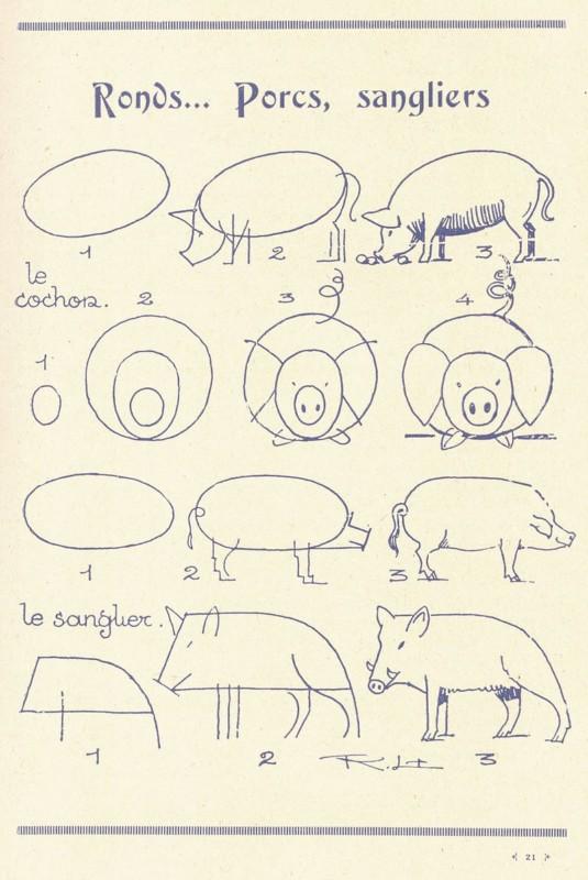 豚の描き方