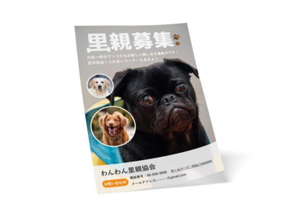 ペットの里親募集の無料チラシテンプレート(犬)_A4