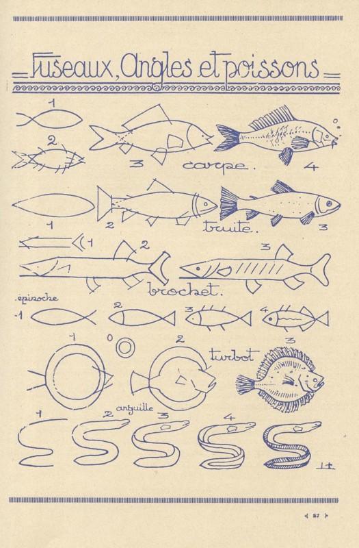 魚の描き方