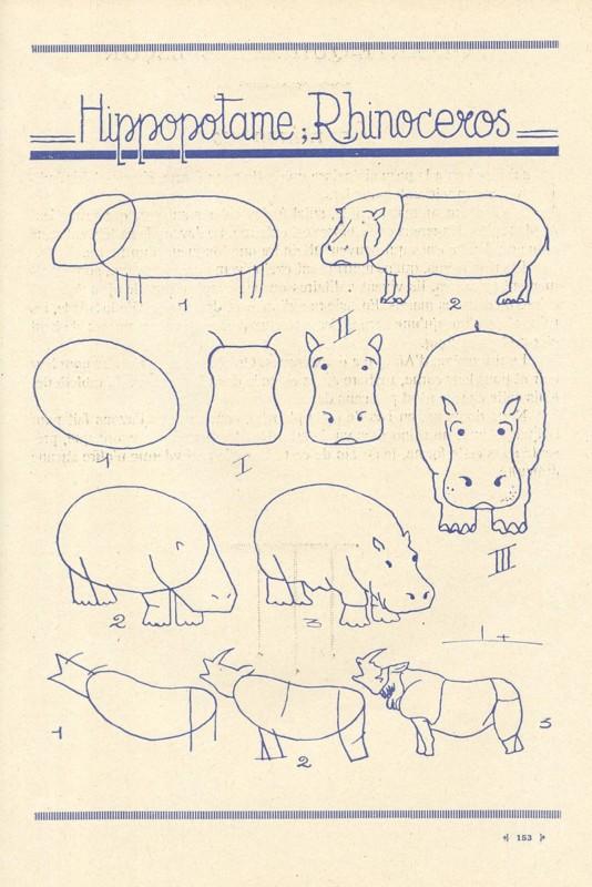 カバの描き方