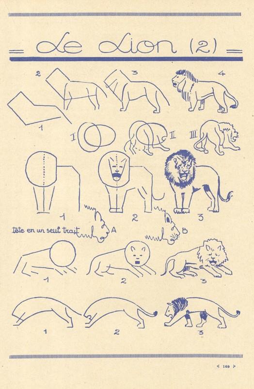 ライオンの描き方