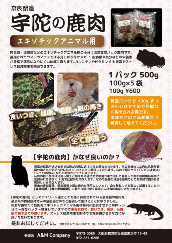 爬虫類・猛禽類向けの餌の販売チラシ_A4サイズ