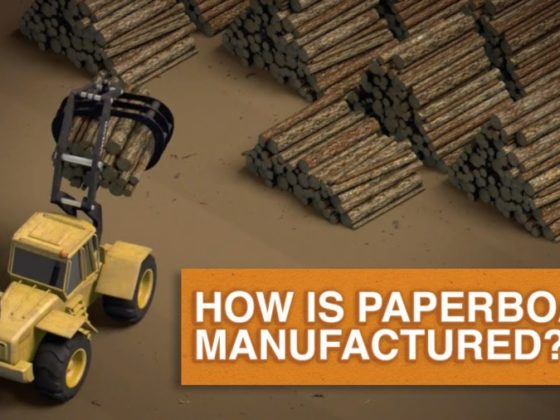 動画で分かる!板紙の製造工程について