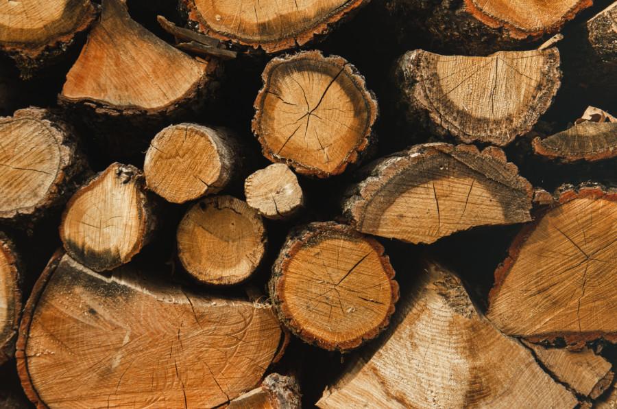 木や林業に関係したロゴについて