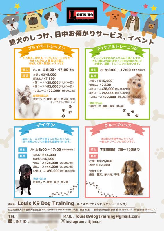 犬のしつけ・トレーニングサービスのチラシデザイン_A4サイズ
