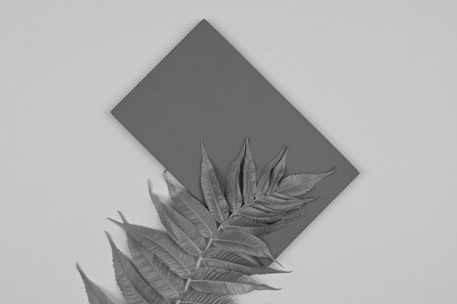 Ultimate Gray(アルティメット・グレイ)